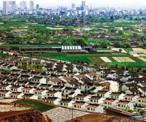 许鹏刚 县城外的新农村